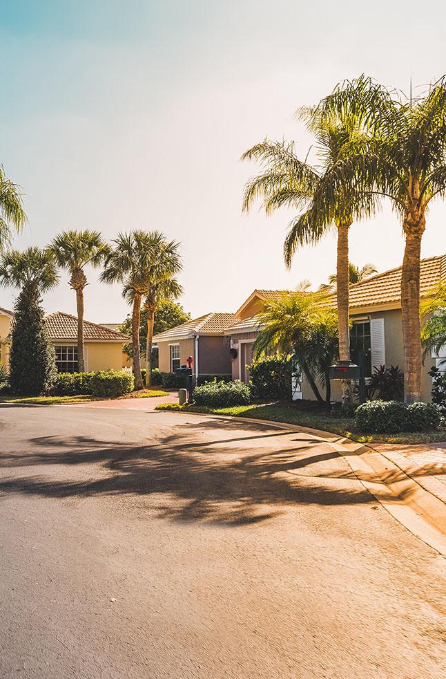 Nice Community of Homes in Windermere